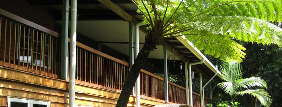 Epiphyte Bed & Breakfast, Daintree Accommodation