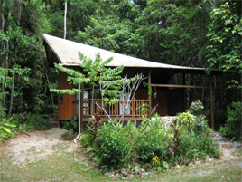 Epiphyte Bed & Breakfast - Cabin