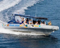 Reef Adventure Tours - Daintree Tours