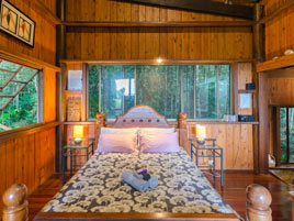 Golden Orchid Cottage - Cabin Accommodation